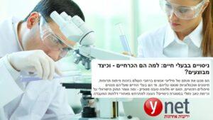 מכון מחקר החזירים בקיבוץ להב – מדוע ניסויים הכרחיים? | YNET
