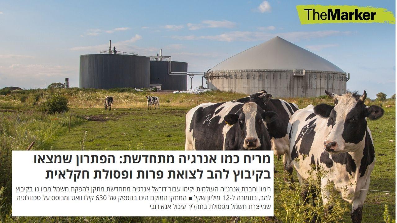 קיבוץ להב יפיק חשמל מפסולת חקלאית ופרש בעלי חיים | מתוך 'דה מרקר'