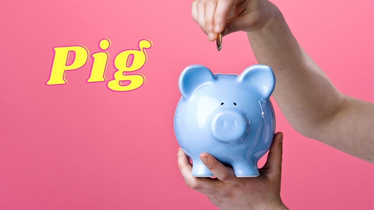 Read more about the article קופת חיסכון, חזירים וחקלאות – מה הקשר ביניהם? | קיבוץ להב
