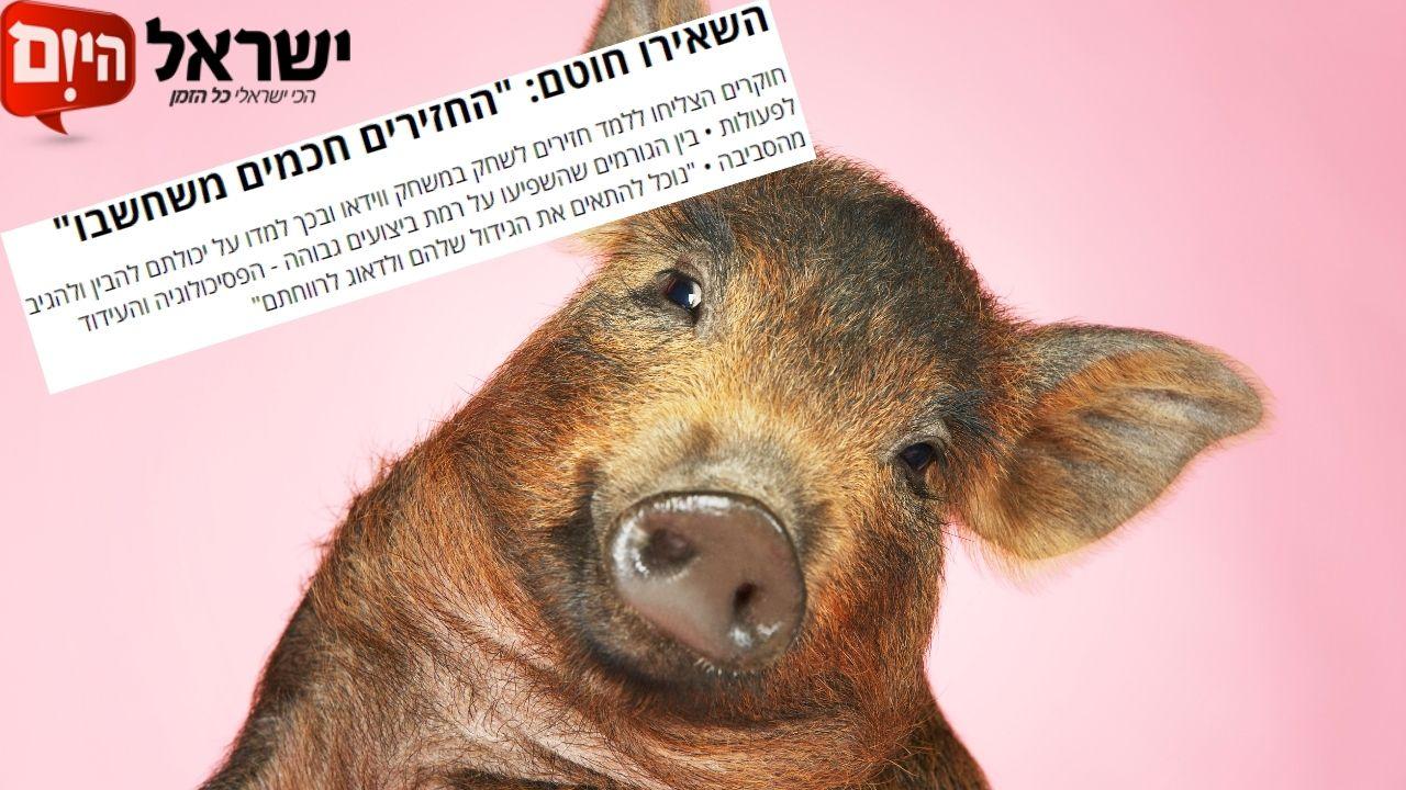 פסיכולוגיה של חזירים | קיבוץ להב | ישראל היום
